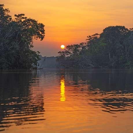 Manaus (Brazil)
