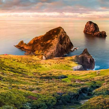 Bay of Islands (New Zealand)